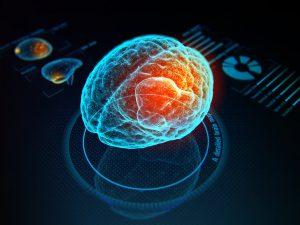 neural imaging